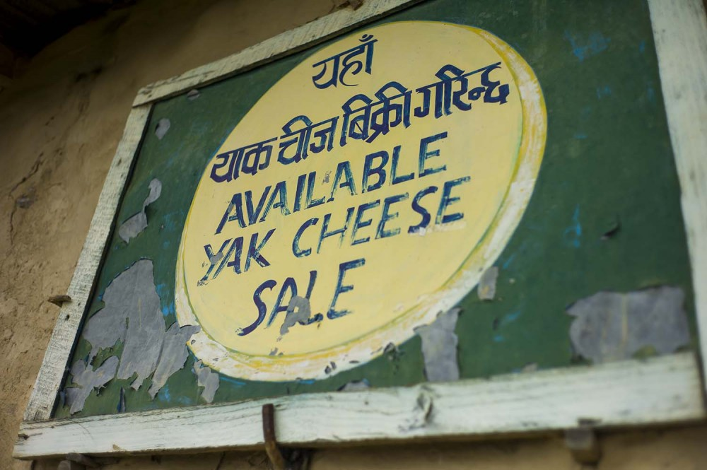 "The sign should read ""Delicious Cheese Here"""
